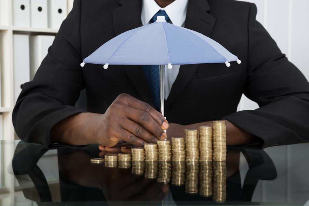 ACE Project Management - Asset Protection