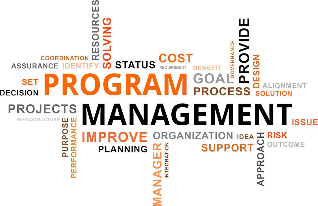 ACE Project Solutions - Program Management
