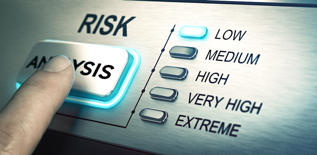 ACE Project Solutions - Risk Analysis