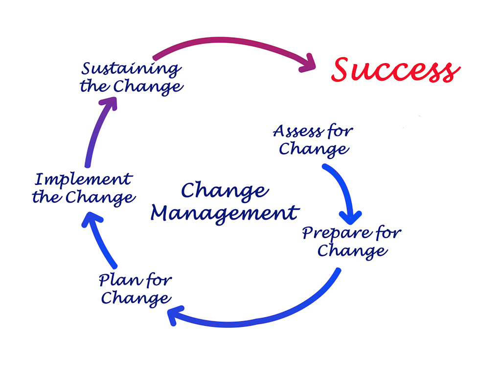 ACE Project Solutions - Transition and Change Management